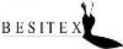 Logo Besitex